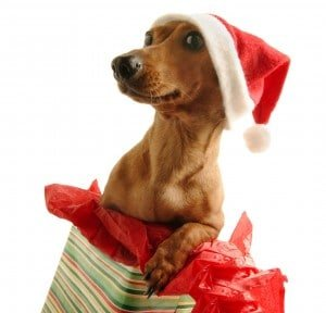 Stress Management and the Holidays